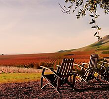 View from Cambria Winery, Santa Maria, CA by HeavenOnEarth