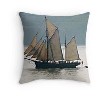 """ Coming Home"" Throw Pillow"