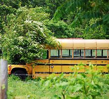 School Bus Planter by madman4