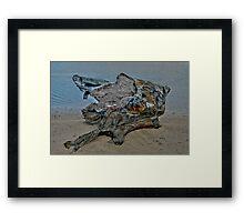 Dead Wood Framed Print