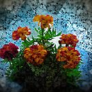We ARE the Flowers by leca
