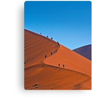 All the way to the top Canvas Print
