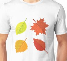 Colorful autumn leaves Unisex T-Shirt