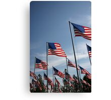 The Flags of USA Canvas Print