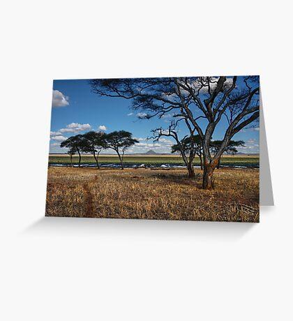 The Swamp - Tarangire National Park - Tanzania Greeting Card