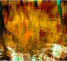 Reflections In A Pond #11 by Mark Ross
