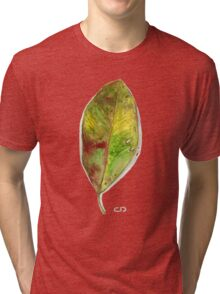 Beech Leaf In Autumn Tri-blend T-Shirt