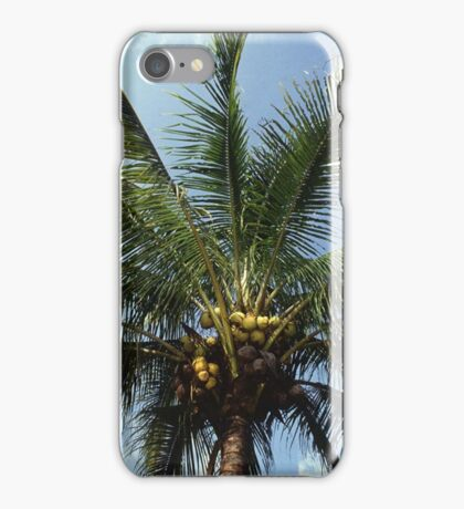 Coconut Palm Tree iPhone Case/Skin