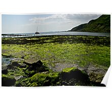 Green sea view Poster