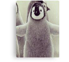 cutest penguin  Canvas Print