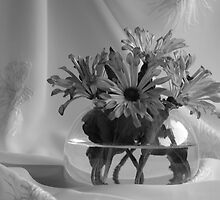 black&white flowers by VioDeSign