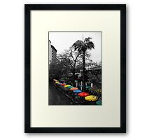 Jewel of the River Framed Print