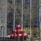 Ornaments and Lights by Jill Vadala