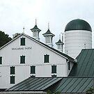 Malabar Farm by Monnie Ryan