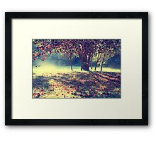 Don't fall so quickly Framed Print