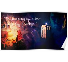 The Doctor and Rose Poster