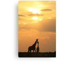 Giraffe Silhouette - Golden Beauty Canvas Print
