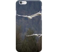 A Pair of Swan Pairs iPhone Case/Skin