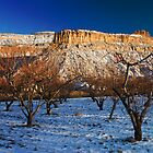 Palisade In Winter by bluerabbit