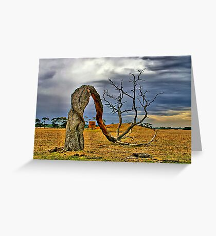 """Bowing to the Forces of Time and Nature"" Greeting Card"