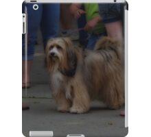 A Dinstinguished Pooch iPad Case/Skin