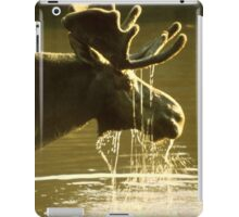 Moose Dipping His Head Into Water iPad Case/Skin