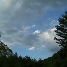 TN MT SKY by ELIZABETH B