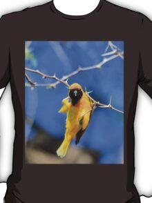 Golden Weaver - Hanging on for LIfe T-Shirt