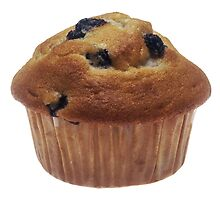 Blueberry Muffin by BravuraMedia