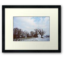 A Walk in Winter Framed Print
