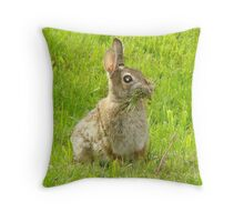 Nesting Bunny Throw Pillow