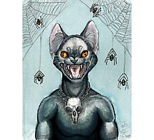 The Black Cat Photographic Print