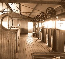 Peron Station Shearing Shed by Caroline Scott