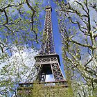 Eiffel Tower in the Spring by Tom  Reynen