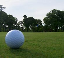 """""""A Long One For Birdie"""" by Clayton  Turner"""