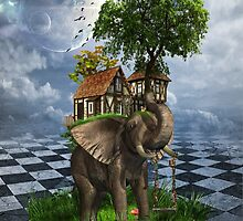 The Elephant House by Kim Slater