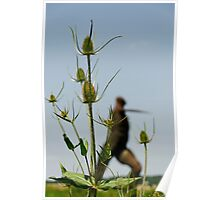 The willow man of Somerset, Bridgwater, UK Poster