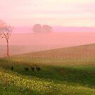 Misty Valley by Neophytos