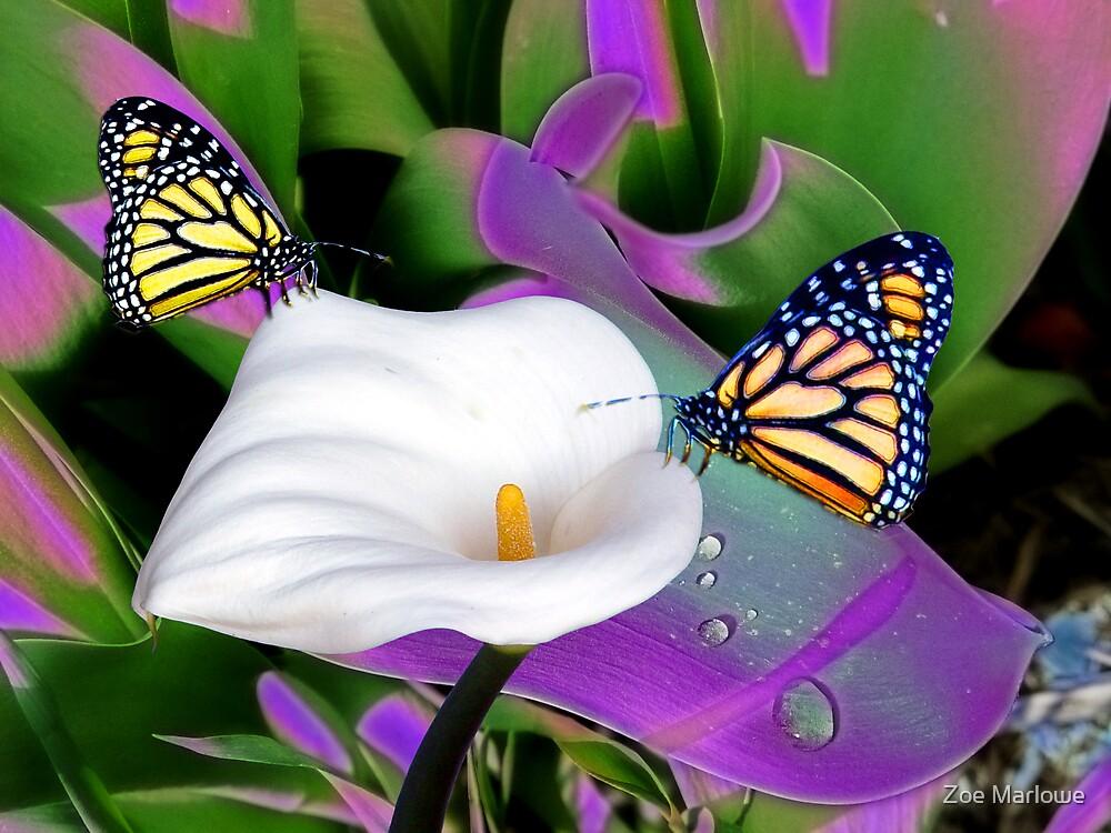 Magical Monarchs by Zoe Marlowe