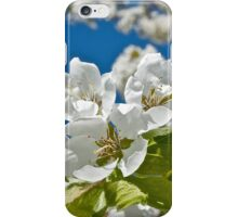 Plum Tree Blossoms iPhone Case/Skin