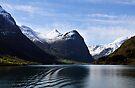 Briksdal glacier, Oldevatnet lake, Norway by David Carton