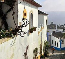 Cobbled street, Obidos, Portugal by buttonpresser