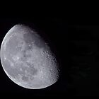 shoot the moon by J.K. York