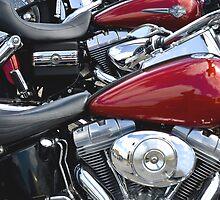 Row of Harleys by lightmonger