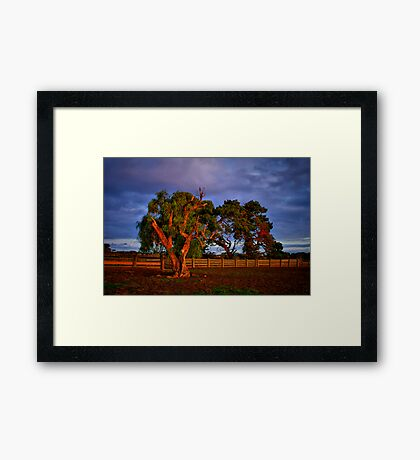 """In the Holding Yard"" Framed Print"