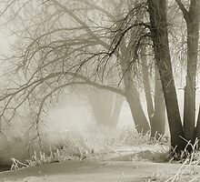 Ghosts In The Mist by Gregory J Summers