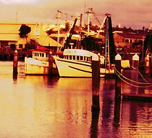 The Docks by reflector