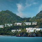 Dominican Republic Coastline by Shelley Neff