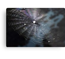 The Handiwork of a Spider  Metal Print