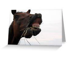 Hay! Greeting Card